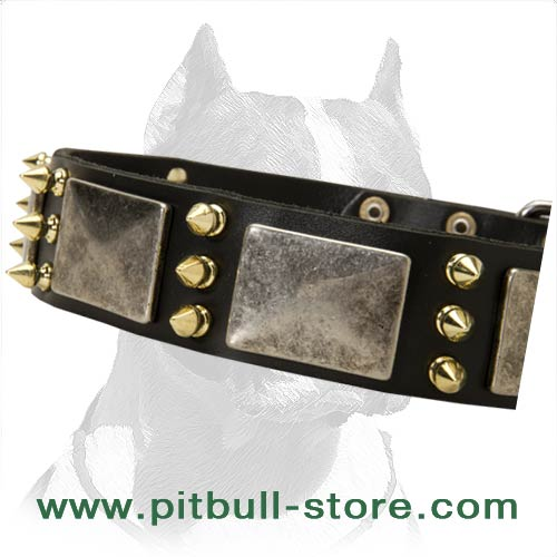 Safe for your dog's health Leather Collar