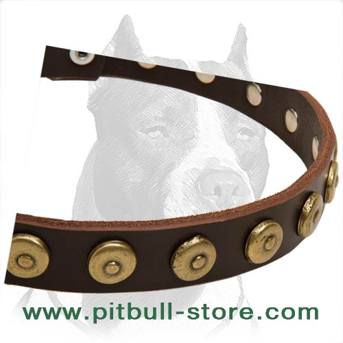 Studded Leather Dog Collar riveted for strength