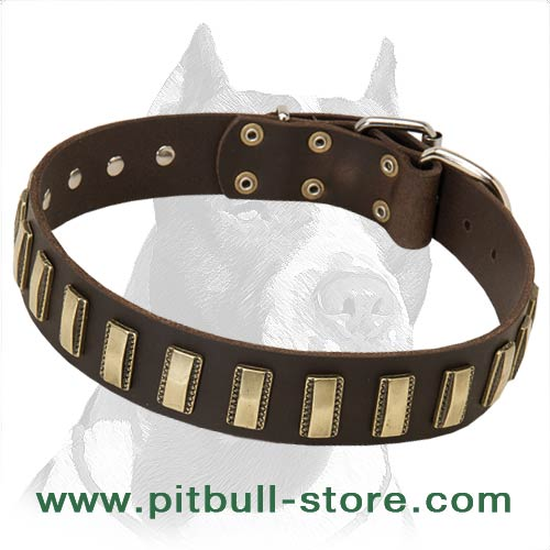 Cool Collar with carved brass plates
