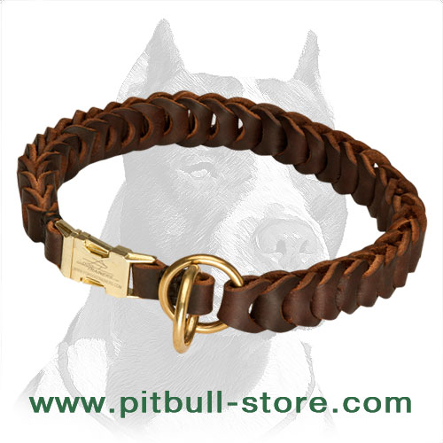 Choke collar leather for Pitbull durable hardware