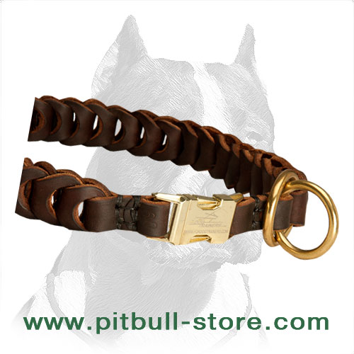 Leather choke collar for Pitbull handcrafted