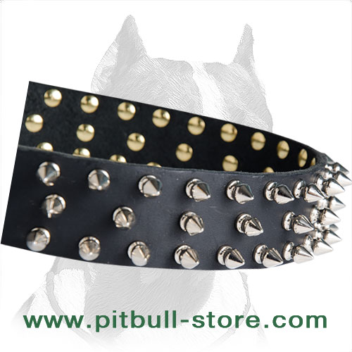 Collar leather for Pitbull extra durable