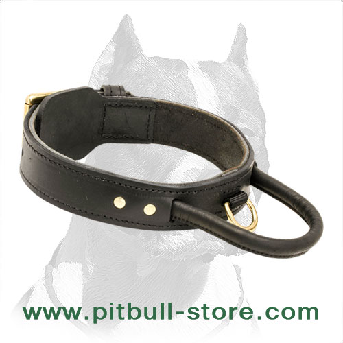 Wide leather dog collar for Pitbull