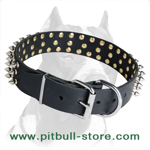 Leather collar for Pitbull corrosion proof