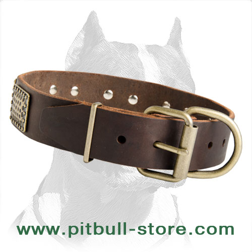 Pibull leather collar durable material
