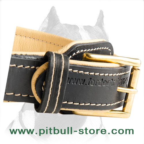 Pitbull collar leather with rust resistant buckle