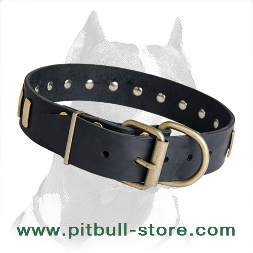 Leather collar for Pitbull firm hardware