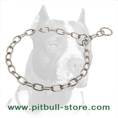 Dog chrome plated choker for Pit Bulls