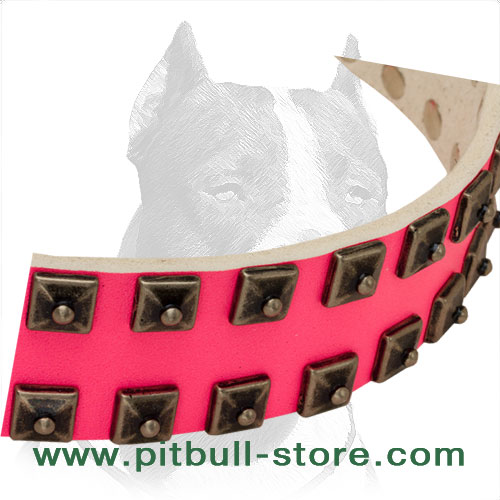 Pitbull collar with handset old nickel dotted studs