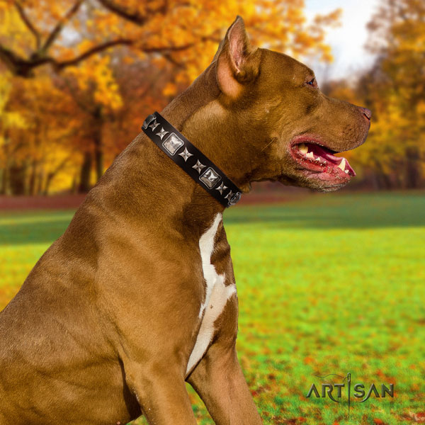 Pitbull easy adjustable genuine leather collar with decorations for your canine