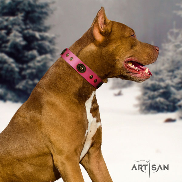 Pitbull easy wearing natural genuine leather dog collar with awesome decorations