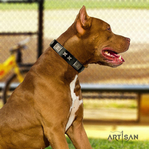 Pitbull easy to adjust natural genuine leather dog collar with fashionable embellishments