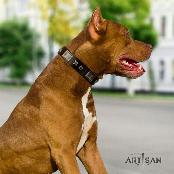 Pitbull handmade natural genuine leather dog collar with inimitable adornments