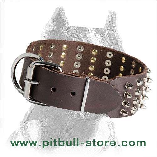 Leather dog collar for Pitbull spikes and pyramids through the set