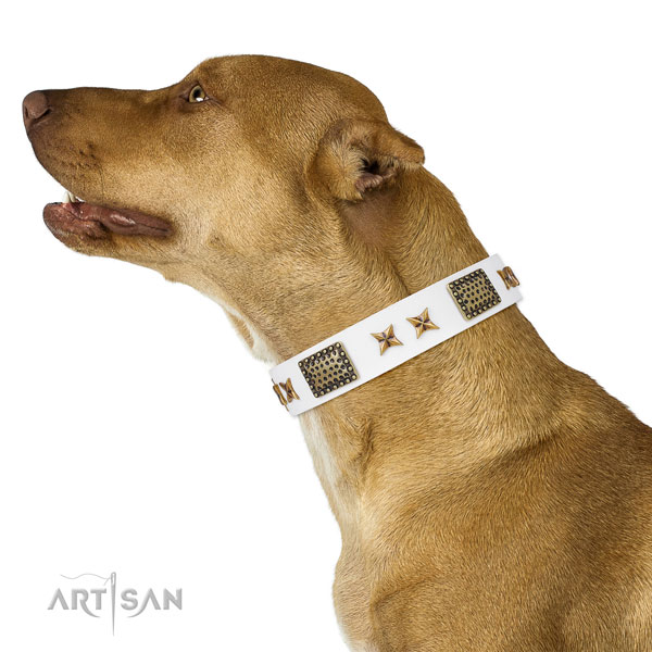 Pitbull fashionable natural genuine leather dog collar for comfortable wearing