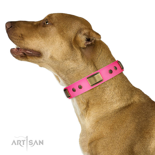 Pitbull easy to adjust leather dog collar for daily walking