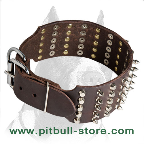 Leather dog collar for Pitbull with shiny spikes and studs