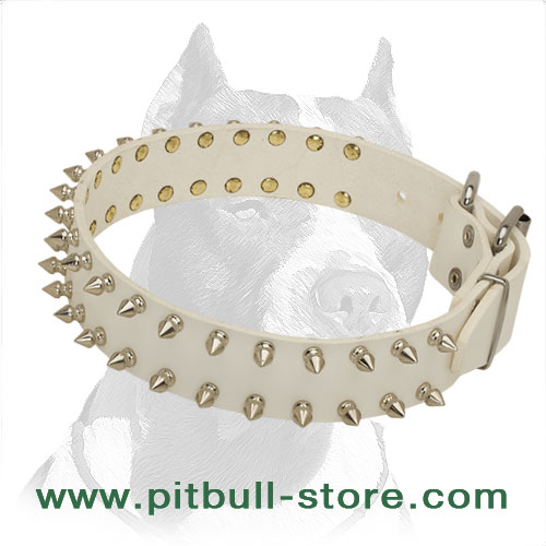 Dog collar for strong Pitbulls made of strong leather to prevent tearing