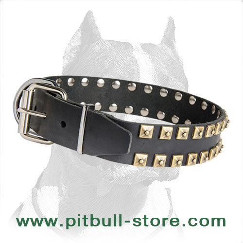 Top-quality leather Pitbull collar, bright style with studs