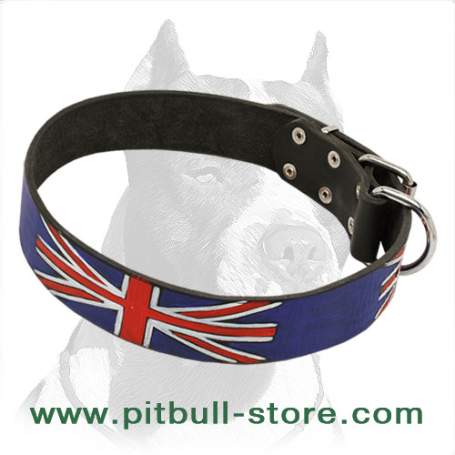 Pitbull collar for walks in style hand-painted with water-resistant paints