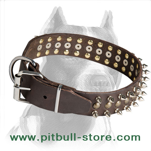 Pitbull dog collar for walks and basic training of 100% genuine strong leather