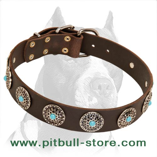 Exclusive Leather Collar with Conchos