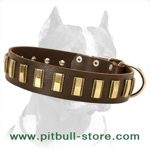 Multipurpose Leather Collar with decoration