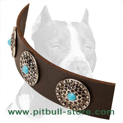 Excellent Design Leather Collar