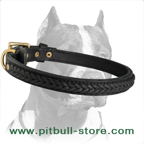 Two-ply Leather Collar 1 inch (25 mm) wide