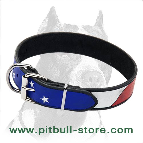 Handpainted Collar for your Dog