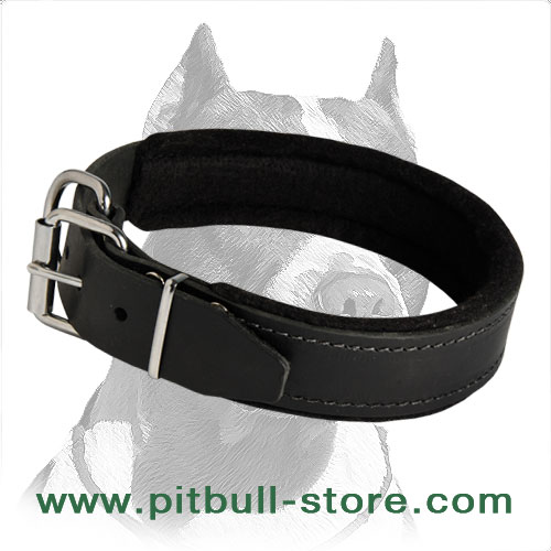Extra-strong Collar with welded D-ring