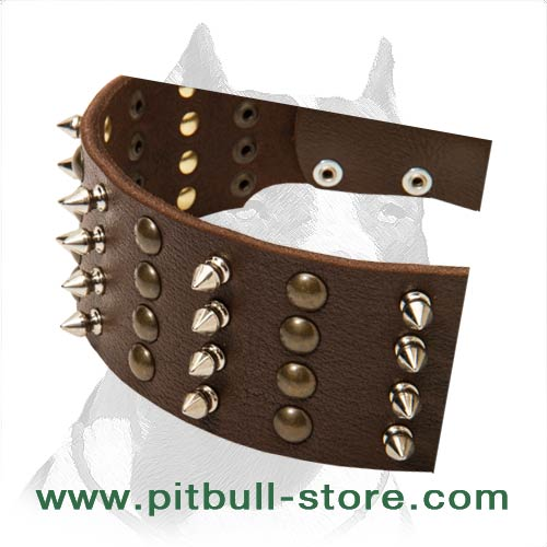 Extra Strong Leather Collar