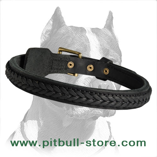 Walking/training Collar of Best Quality Oiled Leather