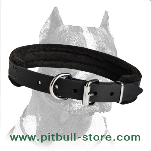 Excellent Quality Leather Collar