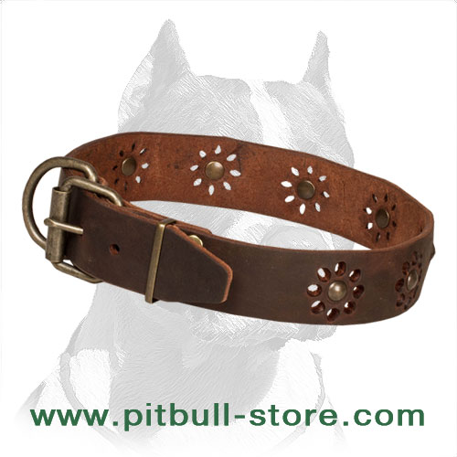 Leather dog collar with large traditional buckle