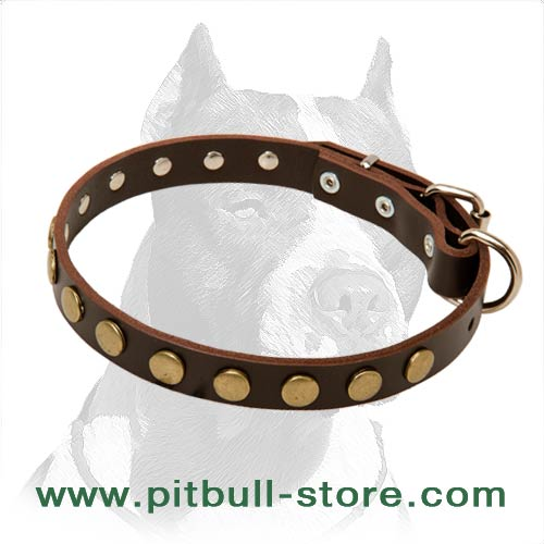 Leather Dog Collar with Nickel buckle