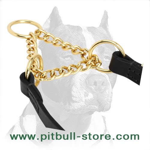 Martingale collar's brass chain