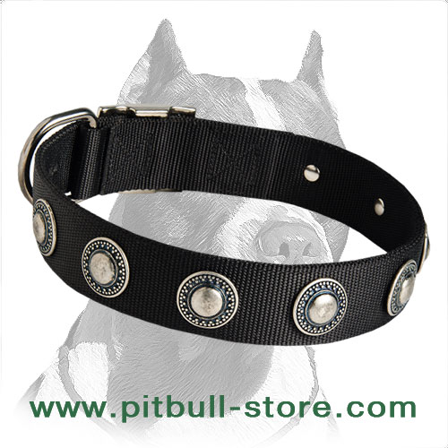 Two-ply Nylon Collar decorated with Conchos