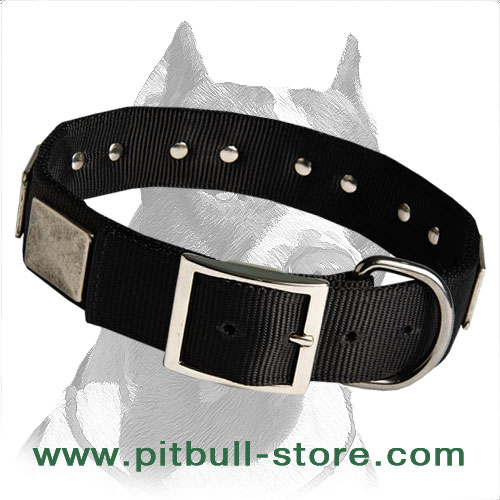 Two-ply Nylon Collar with stylish plates