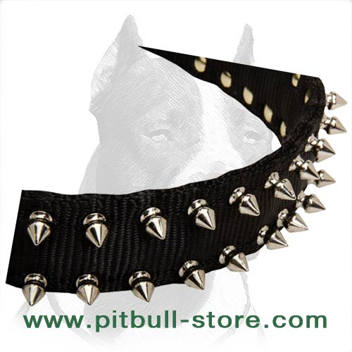 Pitbull Dog Collar of two-ply Nylon