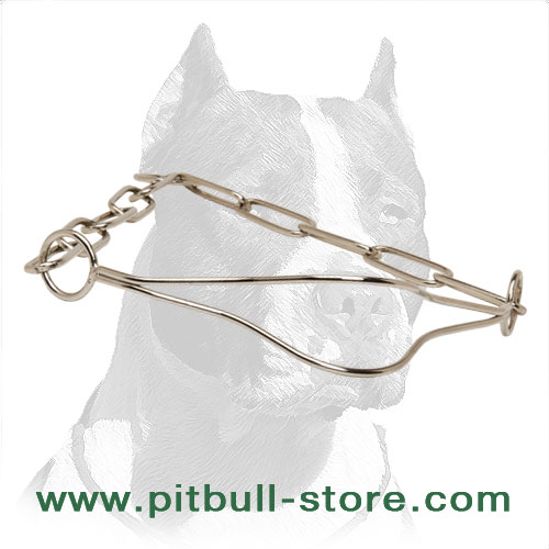 Pit Bull dog fur saver chain collar