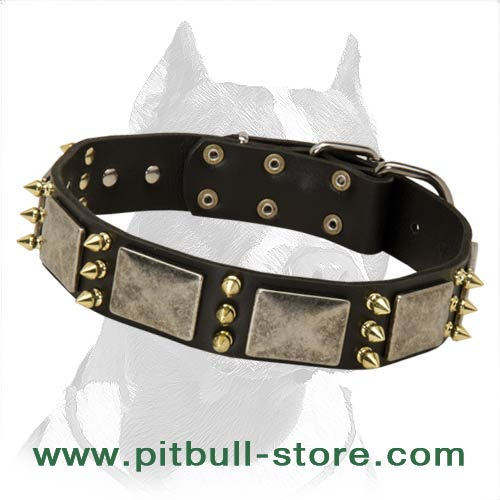 Collar for Handling strong Pitbull
