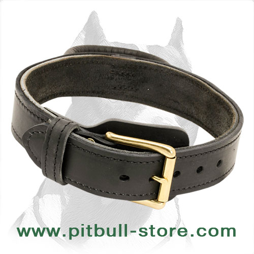 Pitbull classic leather dog collar with brass hardware