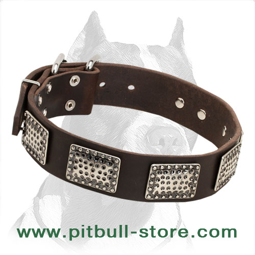 Leather dog collar with plates decoartion for Pitbull