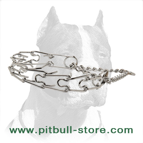 Prong collar for PitBulls, super effective