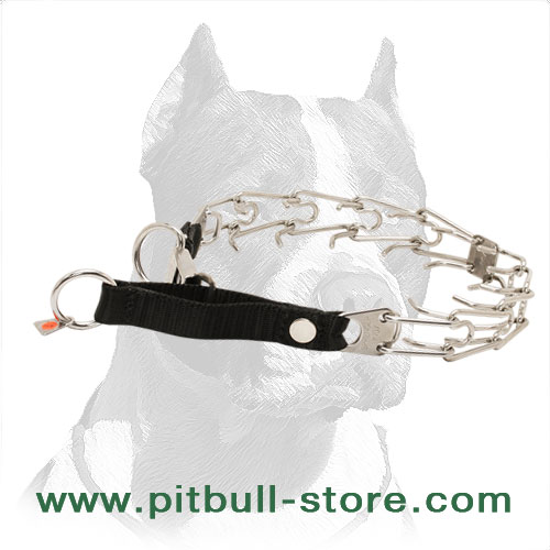 Pitbull stainless steel prong collar