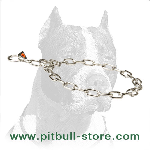 choke and usual dog collar with 2 O-rings