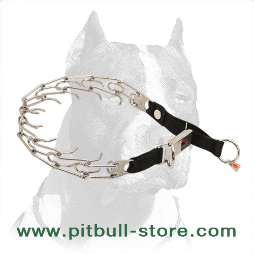 Dog pinch collar of stainles steel