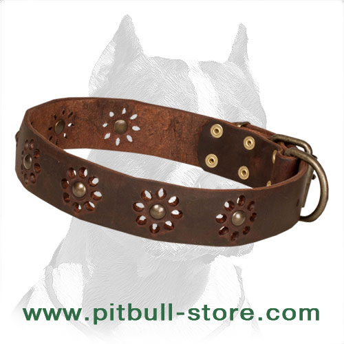 Pitbull dog collar, soft leather