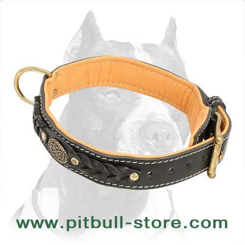 Dog collar for Pitbulls, easily adjustable